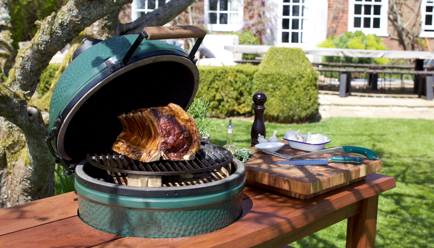 Shop Big Green Egg